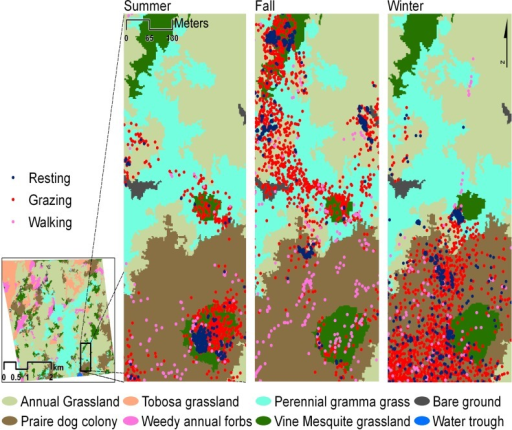 Spatial pattern of the three classes of cattle activity relative to the vegetation/ground cover types through seasons.Colored dots indicate cattle locations by activity across all weeks during each sample season.