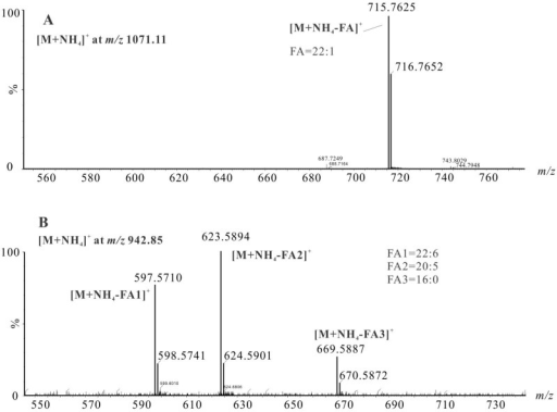 MS/MS spectra of [M + NH4]+ adducts of TAGs in shrimp oil at m/z 1071.11 (A) and 942.85 (B).