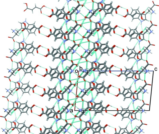 The crystal packing of the title compound, viewed along the b axis. The hydrogen bonds are shown as dashed lines (see Table 1 for details).