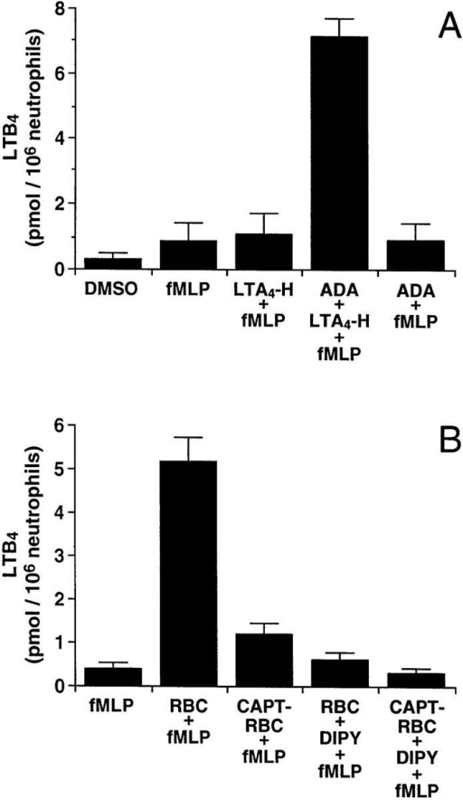 Effect of exogenous  LTA4 hydrolase, Ado deaminase,  and RBCs on the biosynthesis of  LTB4 by PMNs in plasma. (A)  PMN (5 × 106) in suspension in  autologous plasma (0.5 ml) were  treated with 1.2 nM TNF-α and  1 μg/ml LPS for 30 min at  37°C. 10 μl of the preparation of  rLTA4 hydrolase (see Materials  and Methods) and/or 4 U of  Ado deaminase (or its diluent,  NaCl 0.9%) were added (per  milliliter of incubation media) 1  and 5 min, respectively, before  stimulation with 1 μM fMLP.  After 15 min of stimulation, the  incubations were stopped and  LTB4 production was measured  by RP-HPLC. (B) PMNs (5 ×  106) in suspension in autologous  plasma (0.5 ml) were treated with  1.2 nM TNF-α and 1 μg/ml LPS  for 30 min at 37°C. RBCs (0.5 ml of packed cells) treated or not with  captopril (see Materials and Methods) were next added to PMNs in  plasma; the incubation media were further treated or not with 30 μM  dipyridamole for 25 min at 37°C, and then stimulated with 1 μM fMLP  for 15 min. LTB4 biosynthesis was measured by RP-HPLC. Results  shown are the means ± SD of triplicate incubations from one experiment  representative of three. LTA4-H, LTA4-hydrolase; DIPY, dipyridamole;  CAPT-RBC, captopril-treated red blood cells; ADA, Ado deaminase.