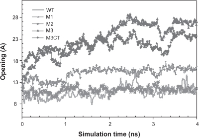 Comparison of opening dynamics for various mutants at low pH. M3 showed the                        maximum opening of 1.6 nm during the simulation time. The control mutant                        M3CT initially followed a similar dynamics but lags the net opening of M3 by                        0.4 nm. The dynamics of wild-type (WT) and mutants M1, M2 are explained                        previously.
