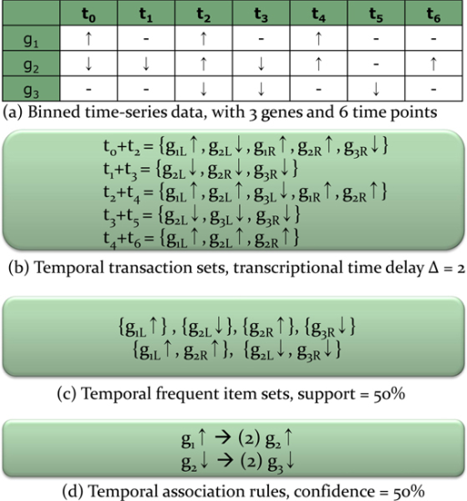 An illustration of temporal association rule mining process. An illustration of temporal association rule mining process with transcriptional time delay Δ = 2, support ≥ 50%, confidence ≥ 50%.