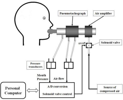 schematic representation of the negative expiratory pre