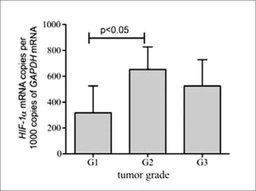 HIF-1α mean mRNA expression level in bladder carcinomas; a comparison between subgroups with different tumor grade