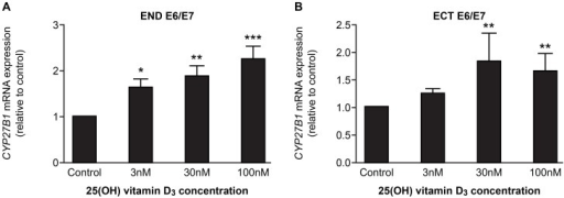 Effect of 25(OH) vitamin D3 on CYP27B1 expression in endocervical (END E6/E7) and ectocervical (ECT E6/E7) cell lines.Cells treated for 24(control), 3 nM, 30 nM or 100 nM 25(OH) vitamin D3. (A) End E6/E7 cells (n = 3), (B) Ect E6/E7 cells (n = 3). Data presented as mean fold change relative to control ± SEM (error bars). *, **, **, p<0.05, 0.01, 0.001 respectively compared with control (One-way ANOVA with Dunnett's post-test).