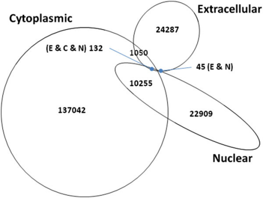 Venn diagram of eukaryotic proteins exclusively found in three localization categories (selected from UniProt; see Methods for details). A significant number of proteins are found both in the cytoplasm and in the nucleus.