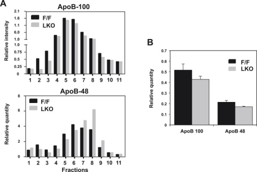 Quantification of western blots.Immunoblot results of apoB-100 and apoB-48 proteins in (A) Figure 2E and (B) Figure 2D were quantified by densitometry.DOI:http://dx.doi.org/10.7554/eLife.06557.007