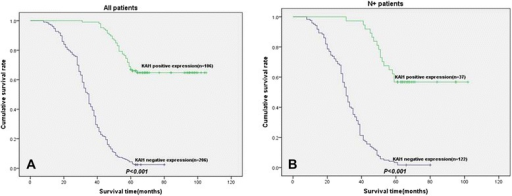 Disease-specific survival curves according to NSCLC cells expression of KAI1. a In the total cohort of patients (n = 312), the median survival in the negative expression of KAI1 group was 34.6 months, compared with 67.3 months in the positive expression of KAI1 group. b In all patients with N+ status (n = 159), the median survival in the negative expression of KAI1 group was 32.0 months, compared with 79.2 months in the positive expression of KAI1 group