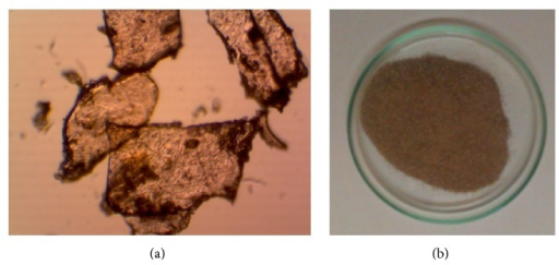 Photograph of gum powder taken (a) under high magnification microscope and (b) using digital camera.