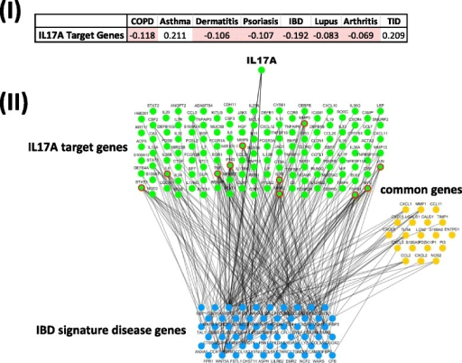 Topological localization of drug target genes and signature disease genes. (I) Network-based separation scores of IL17A target genes and signature disease genes of different disease categories. (II) Network connection of IL17A target genes and IBD signature disease genes. Line represents the direct link between the two groups. Green color: IL17A target gene; blue color: IBD signature disease gene; orange color: common gene. Green color with red outline: target genes have direct connection with more than six signature disease genes