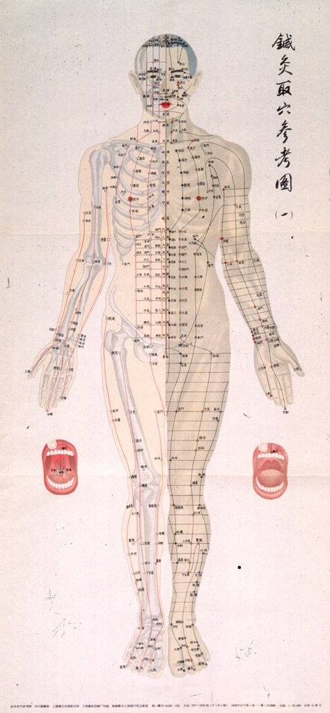 <p>Off-white poster with black lettering.  All lettering appears to be in Chinese characters.  Visual image is an illustration of a man.  Bones are depicted on half of his body and muscles on the other half.  Acupuncture points are noted all across his body.</p>