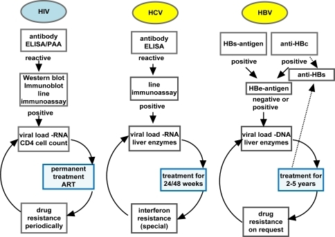Scheme of the algorithm of antibody, antigen and viral nucleic acid testing in the diagnostics of HIV, HCV and HBV infection. When the diagnostic window is closed and the initial antibody testing result is negative virus infection is excluded, therefore further data are not documented in the algorithm. When patients have to be treated dependent predominantly on their clinical status, which is not cited in this scheme, a circle of drug application, drug resistance testing and viral load and CD4 cells determination in HIV infected patients, and viral load and liver enzyme testing, as ALT and AST, in hepatitis patients has to be pursued. Permanent treatment is obligatory in AIDS patients and treatment in hepatitis patients occurs until improvement or final failure is obvious