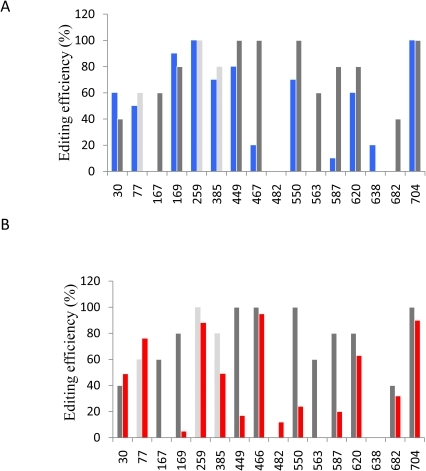 Editing status of cox2 transcripts carrying combined −1 or +1 mutations.Gray bars represent the editing efficiency on the wild type transcripts. (A) Editing status of mRNA from the combined −1 mutant (blue bars). (B) Editing status of mRNA from the combined +1 mutant (red bars). The sites C77, C259 and C385 not mutated in the −1 or +1 combined constructs are shown by light gray bars. The results presented are representative from at least two separate experiments. Editing efficiency variations in replicates was lower than 10%.