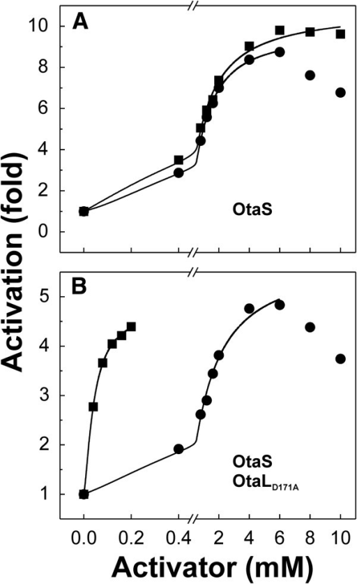 Effect of OtaL on the affinity of OtaS for 3-PGA. The OtaS homotetramer is similarly activated by 3-PGA and FBP, whereas the mutant OtaS/OtaLD171A heterotetramer has a higher affinity for 3-PGA than FBP. The plots show the activation of OtaS (A) and OtaS/OtaLD171A (B) by 3-PGA (▪) and FBP (·).