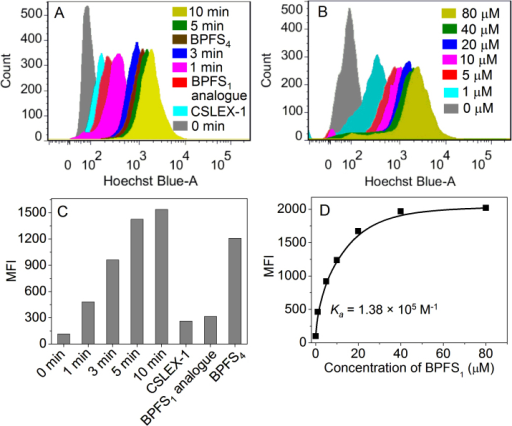 Flow cytometry profiles (A), (B) and quantification of the cellular fluorescence shown via MFI (C), (D) of HepG2 cells respectively incubated with BPFS1 (20 μM) for different time (A), (C) and BPFS1 at different concentration for 5 min (B), (D).