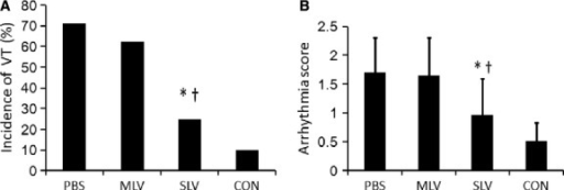 Incidence of VT and arrhythmia score at 1 week after infarction and microinjection. (A) Incidence of non–self-terminating VTs during PES. (B) Arrhythmia score in the SLV group was significantly lower than that in MLV and PBS groups at 1 week after infarction and microinjecttion. *P = 0.018, versus the PBS group and †P = 0.025, versus the MLV group respectively.