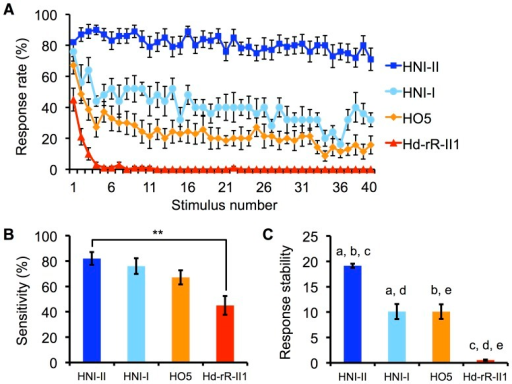 Comparison of Startle Response Properties among Inbred Strains.HNI-II (n = 20), HNI-I (n = 6), HO5 (n = 14), Hd-rR-II1 (n = 20). (A) Transition of response probability. Bars represent SEM. (B) Sensitivity of four inbred strains. Bars represent SEM. ** p<0.01 by Scheffe's F test. (C) Response stability index of four inbred strains. Bars represent SEM. a, b, c, d, and e indicate p<0.01 by Scheffe's F test.