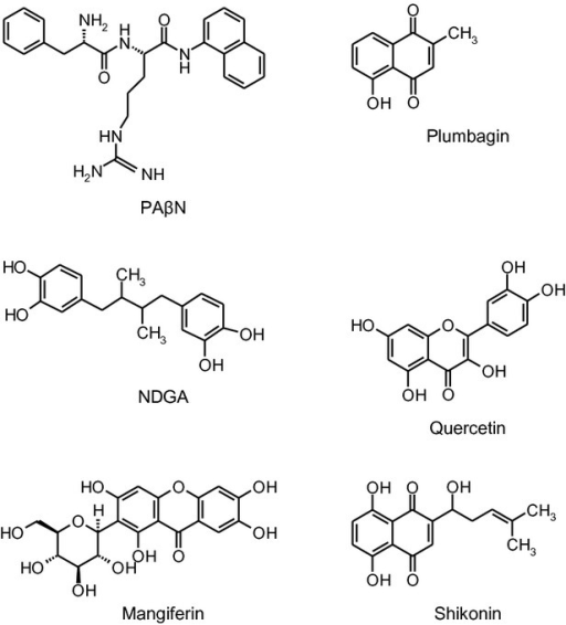 Structures of PAβN and the phytochemicals.