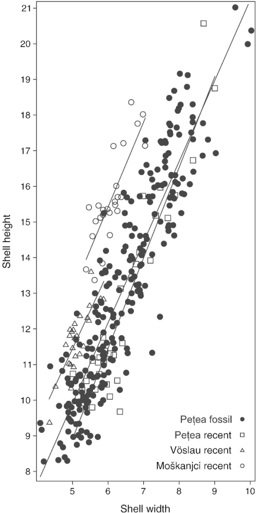 Shell height and width with indication of linear trend lines corresponding to the four groups. Note that M. d. acicularis (Moškanjci) and M. d. daudebartii (Vöslau) are quite well separated, while subfossil and recent Pețea-melanopsids fully overlap.