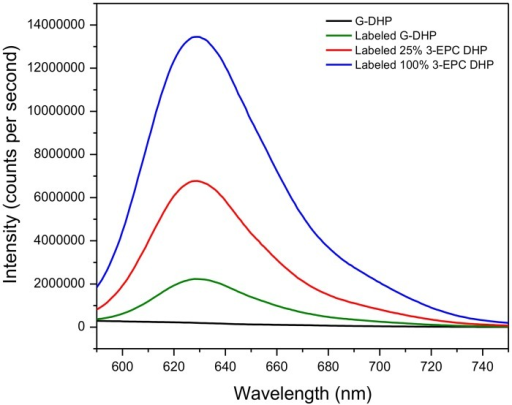 Fluorescence intensities (561 nm excitation) of click-labeled DHPs.5 mg/ml solutions in DMSO of in vitro-synthesized DHPs incorporated with varying proportions of 3-EPC, 6 and click labeled with 1 μM Alexa 594-azide for 1 h in the dark at room temperature. Blue trace: click labeled 100% 3-EPC DHP; red trace: click labeled 25% 3-EPC + 75% CA DHP; green trace: click labeled 100% CA DHP or G-DHP; black trace: non-labeled G-DHP. The red and blue spectra show significantly higher fluorescence intensities compared to labeled and non-labeled G-DHP. Detectable, but low, fluorescence in click labeled G-DHP is possibly due to physical entanglement of the dye with the polymer.
