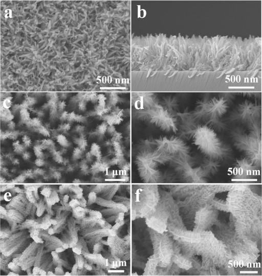 Characterization of titanate array films.(a) Top view and (b) cross sectional SEM images of titanate arrays precipitated on glass substrates. (c,d) SEM images of the core-shell branched nanowire arrays. (e,f) SEM images of the core-shell branched nanobelt arrays.