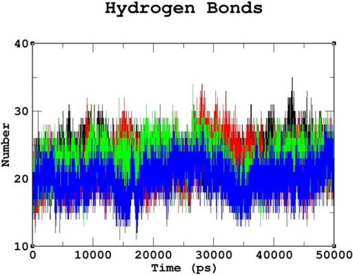 Number of intermolecular hydrogen bonds formed between the protein and DNA in the native and mutant complexes.Color scheme: native (black), R131W (red), R131Q (green), and R203C (blue).The R203C mutant complex formed the least number of intermolecular hydrogen bonds throughout the simulation period compared to the native complex, followed by the R131Q mutant complex. The R131W mutant complex formed less number of intermolecular hydrogen bonds than the native complex but more than the R131Q and R203C mutant complexes.