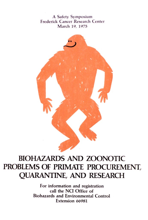 <p>A drawing of a standing primate.</p>