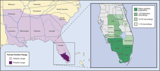 The Historic and Current Range of the Florida PantherTh | Open-i