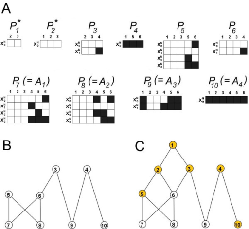 Partition sequences in the example Boolean network model. (A) 10 partition sequences are identified for the example model in Fig. 2. Each column in each sequence corresponds to a node in the model, whilst each row corresponds to a partial state. White/Black corresponds to the node having state 1/0 in the partial state. Eight of these (P3 – P10) are also intersection sequences, whilst the remaining two (P1 and P2, starred) are core sequences that underlie multiple intersection sequences (see Tables 1 and 2). (B, C) Examples of hierarchy amongst the sequences in A. In each case, node i corresponds to the partial state sequence Pi. In each case, if a link joins a partial state sequence Px (top) to another Py (bottom), Px occurs in Py and is conserved across a greater number of attractors. (B) Hierarchy between intersection sequences. (C) Hierarchy between partition sequences. Orange nodes correspond to sequences with sub-dynamics that are distinct from those in sequences further up the hierarchy. These 6 distinct sub-dynamics are the subsystems (see Table 3). White nodes correspond to sequences that are just a combination of sequences further up the hierarchy.