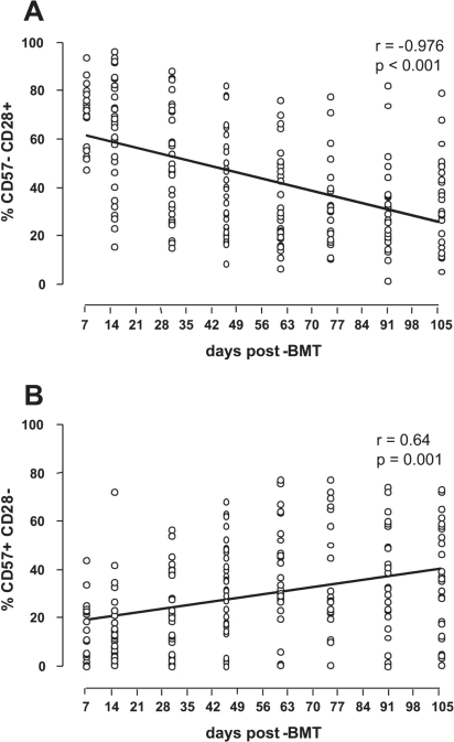 Relative decrease of CD57−CD28+ subset (A) and a relative increase of CD57+CD28− subset (B) in the CD8+ T lymphocyte population occur continuously after BMT, as assessed by Spearman's correlation test