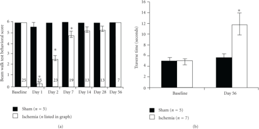 Functional recovery after global ischemia was tested using the beam-walking test (BWT). (a) The mean neurological scores (a score of 6 equals normal behavior) by beam-walking test before and after ischemia at days 1, 2, 7, 14, 28, and 56. The ability of the rats to walk on the beam is decreased during the acute phase after global ischemia but gradually recovers (mean ± SEM; *p < .01, paired two-tailed T-Tests assuming unequal variances). (b) The time for beam traverse before and at day 56 after ischemia. Despite the improvement in the qualitative scoring (i.e., no foot faults), the ischemic rats were much slower than sham or baseline. Because the ischemic rats were not able to complete the traverse until day 56, these are the only time points available. *indicates significant difference between preischemia and postischemia in (a) and the difference between sham and ischemia group at day 56 in (b) (mean ± SEM; p < .02; ischemia day 56 versus either sham or baseline, ANOVA, Tukey HSD post hoc test between all four groups).