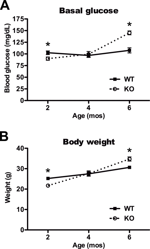 Age-dependent changes in basal blood glucose and body weight. A, Blood glucose in 2-, 4- and 6-mo-old wild-type (WT) and IDE-KO (KO) mice following overnight fasting. Note that 2-mo-old IDE-KO mice exhibit significantly lower basal glucose levels relative to controls. B, Body weight of fasted 2-, 4- and 6-mo-old WT and IDE-KO mice. Note that IDE-KO mice weigh significantly less than wild-type controls mice at 2 months yet significantly more at 6 months of age. Data are mean ± SEM of 10–12 mice per group. *P<0.05 IDE-KO vs. WT as determined by 2-tailed Student's t test.