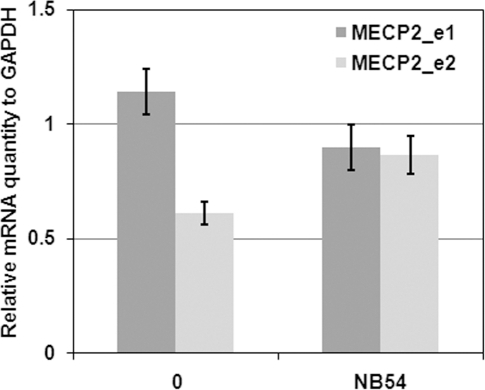 MECP2 mRNA expression levels following treatment with NB54.Total mRNA was purified from NB54-treated (100 µg/ml for 5days) and untreated R294X fibroblasts. Expression levels of both MECP2_e1 and _e2 isoforms were determined by real-time qPCR using GAPDH levels as an internal reference. Experiments were performed in triplicates.