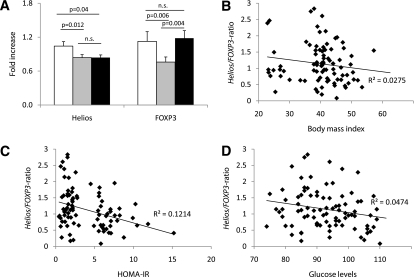 Obese patients with insulin resistance display significantly decreased Helios but increased FOXP3 mRNA expression in their hVAT. A: hVAT of lean control subjects (white bar, n = 14), obese patients with normal insulin sensitivity (HOMA <2.5, gray bar, n = 39), and obese patients with impaired insulin sensitivity (HOMA >5, black bar, n = 39) was analyzed for Helios and FOXP3 mRNA expression. P < 0.025 was considered significant; n.s., not significant. Correlation of the Helios-to-FOXP3 mRNA ratio in hVAT (n = 92) with BMI (P = 0.121) (B), HOMA-IR (P = 0.003) (C), and fasting blood glucose levels (P = 0.045) (D) was analyzed using Spearman ρ. P < 0.05 was considered significant.