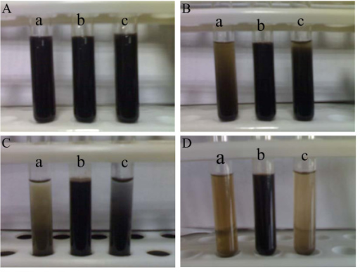 Pictures of the nanofluids containing Fe3O4@PPy NPs standing for various times prepared under different amounts of pyrrole monomer at 160°C: (A) Commencement, (B) 1 h, (C) 4 h, (D) 1 week; (a) 0.1 mL, (b) 0.3 mL, (c) 0.5 mL.