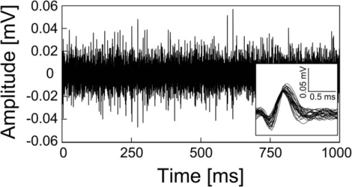 Spontaneous activities recorded from rat cerebellar cortex by the mesh intracortical electrode. Lower right shows a magnified view of the spike waveforms from the recorded spontaneous activities.