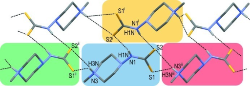 Hydrogen bond network within the crystal of C6N3H13S2×1.5H2O. Dashed lines denote the assumed N—H···S hydrogen bonds. Water molecules are omitted for clarity. [Symmetry codes: (i) 1/2-x, 1.5-y, 2-z; (ii) x, 1-y, -1/2+z); (iii) x, 1-y, 1/2+z.]