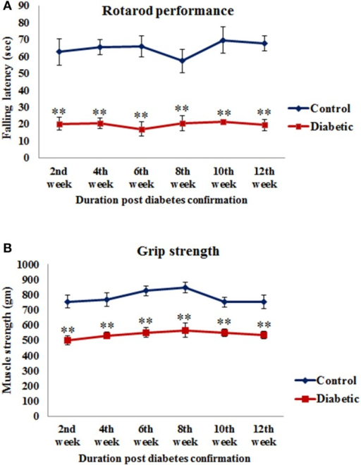 Alteration in motor functions following STZ-induced diabetes. (A) On rotarod performance diabetic animals presented significantly reduced motor coordination on accelerating rod in comparison to controls. (B) Grip strength assessment data showed significantly weak grip strength of diabetic animals in comparison to controls. Values are presented as mean ± s.e.m. (n = 6). **p ≤ 0.001 for comparison of diabetic group with the respective controls.