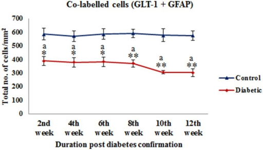Quantification of co-labeled cells (GLT-1 + GFAP) in various layers of the cerebellum following diabetes. There is significant reduction in the population of co-labeled cells at all the diabetic time points as compared to their respective controls. Same alphabets on bars indicate non-significant differences between groups at the given time points (p ≤ 0.001). Value represents mean ± s.e.m. of the 30 readings/ animal/ time point.*p ≤ 0.01, **p ≤ 0.001 for comparison of diabetic group with the respective controls.