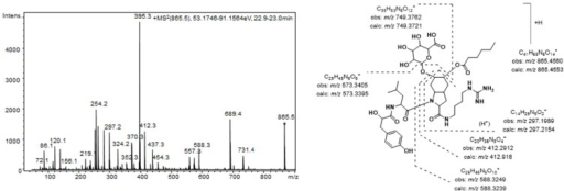 Product ion spectrum for [M + H]+ of compound 7 and its predicted fragmentation pattern. Conditions as mentioned in the experimental section.