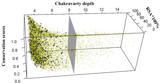 Chakravarty depth, RSA and conservation of epitopes (black points) and non-epitopes (yellow points).Depths of all epitopes are less than 8Å (gray plane).