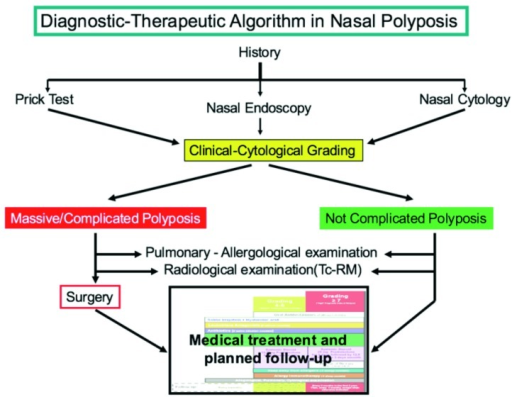 Diagnostic and therapeutic algorithm for nasal polyposis.