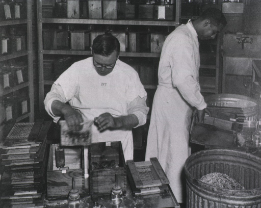 <p>The mesh side of the cage is removed and stacked to the side.  One cage is housing at least four mice.  Two men, one African American, are working with the cages.</p>