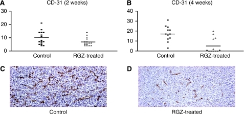 Immunohistochemistry (IHC) for CD-31 evaluation in tumour tissues from control (i.e., solvent treated) and rosiglitazone (RGZ)-treated (A, 2 weeks; B, 4 weeks) mice. Y axis: number of CD-31-positive cells per field. (C) Example of a field showing high CD-31 staining in the tissue sample from a control mouse. (D) Example of a field showing a few CD-31-positive cells after 4 weeks of treatment with RGZ ( × 100 magnification).