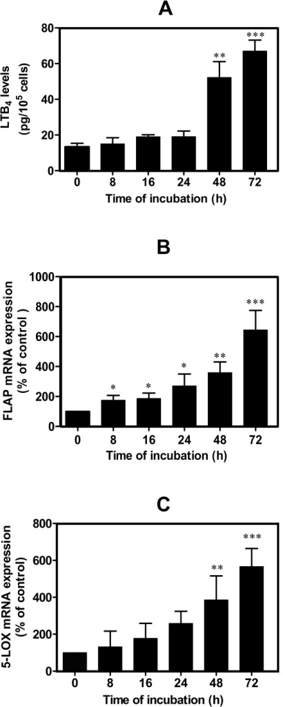 Hydroxynonenal-induced leukotriene B4 biosynthesis and 5-lipoxygenase and 5-lipoxygenase-activating protein expression in human osteoarthritis chondrocytes. Cells were treated with single addition of 10 μM 4-hydroxynonenal for different incubation time periods, as indicated above. (a) Leukotriene B4 (LTB4) production was evaluated by enzyme immunoassay commercial kit. (b) 5-lipoxygenase-activating protein (FLAP) and (c) 5-lipoxygenase (5-LOX) mRNA expression was measured by real-time RT-PCR. Data are means ± standard errors of the mean, n = 5, expressed as percentages of untreated cells. Student's unpaired t test: *P < 0.05, **P < 0.01, ***P < 0.001.