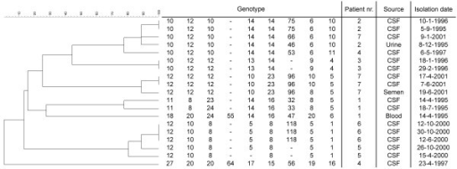 Details of the 19 C. neoformans isolates from 7 patients and relationship between the obtained genotypes. The numbers below the genotype correspond to the number of repetitions observed in markers CNA2a, CNA2b, CNA2c, CNA3a, CNA3b, CNA3c, CNA4a, CNA4b and CNA4c, respectively. A hyphen indicates that no result was obtained. The dendrogram is based on a categorical analysis using UPGMA clustering. The scale bar indicates the percentage similarity.