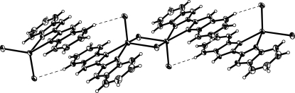 One dimensional chain formed by hydrogen bonds (dashed lines) in the crystal structure of the title compound.