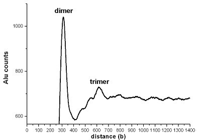 Distances between Alu-repeats in the human genome. Histogram presentation of distances between Alu-repeats (head to head).