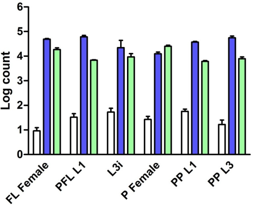 Ss-age-1 is expressed at a low level in all examined S. stercoralis life stages.Ss-age-1 (white bars) transcript levels in comparison to transcript levels of two reference genes, Ss-act-2 (dark blue bars) and Ss-gapdh (light green bars), in six S. stercoralis developmental stages: free-living females (FL Female), post-free-living first-stage larvae (PFL L1), infectious third-stage larvae (L3i), parasitic females (P Female), predominantly (>95%) heterogonically developing post-parasitic first-stage larvae (PP L1), and post-parasitic approximately third-stage larvae heterogonically developing to free-living adults (PP L3). Transcript levels were normalized to Ss-age-1 in free-living females and log transformed. Error bars represent +1 SEM.