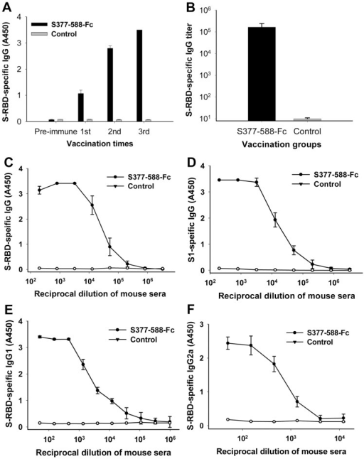 Detection of S-RBD- and S1-specific IgG level in sera of mice immunized with S377-588-Fc protein.PBS was used as the control. (A) The titers of IgG specific to MERS-CoV S377-588-Fc (S-RBD) in sera (1:3,200 dilution) of mice at pre-immunization (pre-immune) and 10 days post-each vaccination. (B) Endpoint IgG titers in mouse sera from 10 days post-last vaccination. The data are presented as mean A450 ± standard deviation (SD) of five mice per group. Ability of IgG binding to MERS-CoV S-RBD (C) and S1 protein (D) was detected using mouse sera from 10 days post-last vaccination. Ability of IgG1 (E) and IgG2a (F) antibodies binding to MERS-CoV S-RBD was detected using sera from 10 days post-last vaccination. The data are presented as mean A450 ± SD of five mice per group at various dilution points.